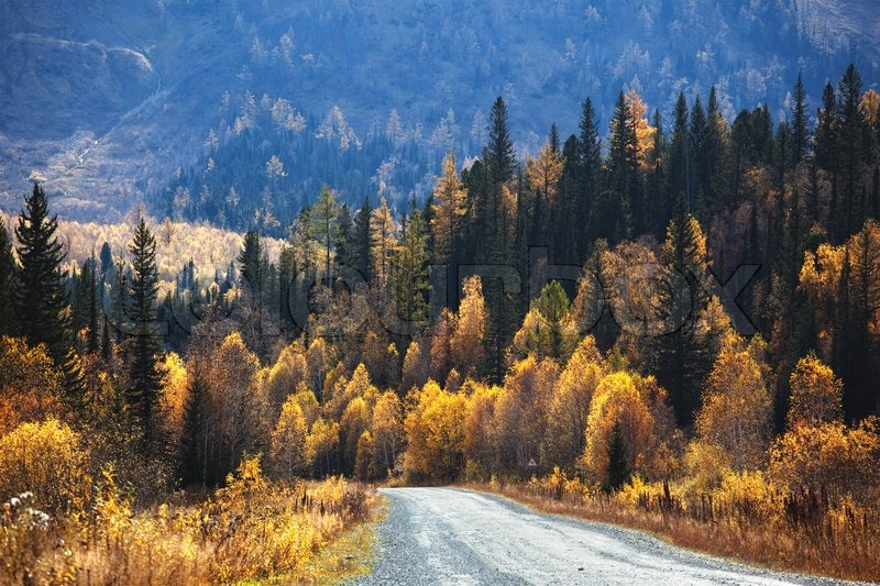 Driving in a sunny October day in Kazakhstan.